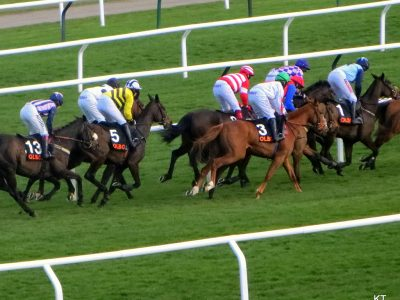 By Carine06 from UK (Quevega's mares' hurdle) [CC BY-SA 2.0 (http://creativecommons.org/licenses/by-sa/2.0)], via Wikimedia Commons
