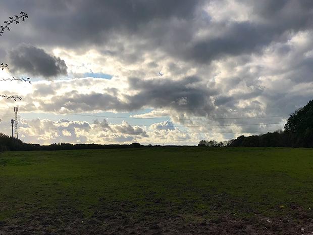 Landscape photo of green field