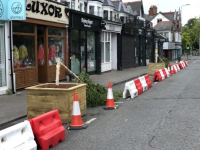 Wellfield Road tree vandalism